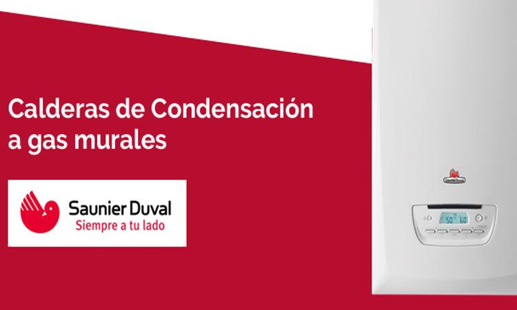 Caldera Saunier Duval Thema Condens AS 30 precio