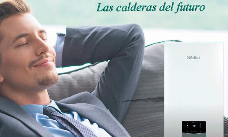 Caldera Vaillant Ecotec Plus VMW 26 CS/1-5 precio
